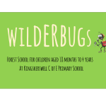 Wilderbugs